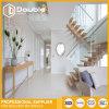 Escaliers en bois de semelle avec l'escalier moderne de pêche à la traîne en verre