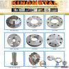 O aço inoxidável do ANSI B16.5 304/316 forjou a flange RF/FF