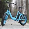 EのバイクかEbikeを折る20inch 500W