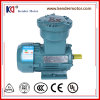 Yb3-100L1-4耐圧防爆証明(Yb3-100L1-4)の三相前証拠ACモーター