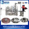 China karbonisierte Getränk-waschenden füllenden mit einer Kappe bedeckenden Maschinen-Lieferanten