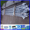 CCS ABS Lr Gl Nk BV verklaarden 1500mm 2300mm 2400mm 2500mm 2900mm Geselende Staven