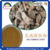 Estratto adesivo naturale del tubero della radice di 100% Rehmannia