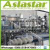 Planta de tratamiento de relleno en botella vidrio automático de la bebida carbónica