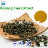 Polvere istante fragrante dell'estratto del tè di Oolong