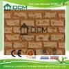 Instalación decorativa del panel de pared exterior del cemento de la fibra
