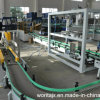 Automatic Carton Packing Machine for Bottles (WD-ZX15)
