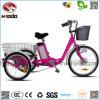 卸し売り電気自転車3の車輪のバイクの安い三輪車