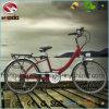 ペダルが付いている卸し売り250W電気都市バイクの安い道Fahrrad