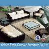 Mobilia stabilita del giardino del rattan del sofà superiore del rattan