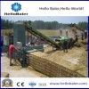 Presse horizontale automatique de paille de qualité pour la centrale