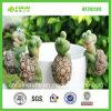 Preiswerter Produkte Frosch-Durch Mutation entstehende Variation Schildkröte-Pflanzenpotentiometer-Aufhänger (NF20295)