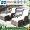 Im Freienmöbel-Garten-Sofa (TG-1510)