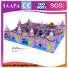SGS&Ce доказало спортивную площадку мягкой игры занятности крытую (QL-020)