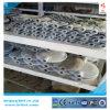 Hebel betreiben PTFE/NBR/EPDM ausgekleidetes Oblate-Drosselventil Bct-F4bfv-4