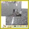 Countertops гранита ангела белые для кухни (YYS-017)