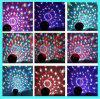 LEIDENE van het Kristal van de Partij van de disco Lichte Magische Bal