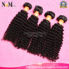 Bohemian Hair Bundles Kinky Curly /Virgin Bohemian Har Weave
