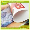 Displqy Printing (RJCB005)를 위한 디지털 Printing Coated Backlit Banner Flex