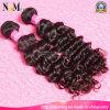 Extension de cheveux de Remy des femmes péruviennes de cheveux bouclés de qualité