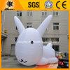 Kundenspezifisches grosses aufblasbares Karikatur-Kaninchen (BMCD60)