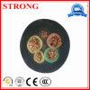 Usage spécial de haute qualité de câble électrique dans l'élévateur de construction/grue à tour
