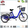 regalo eléctrico del triciclo de la rueda grande de la vespa de la rueda 250W 3 para Handicapped