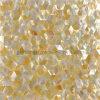 Yellowlipの貝のモザイク・タイル、金真珠色のモザイク