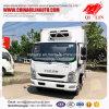 De lichte Vrachtwagen van de Bestelwagen van het Roomijs van de Plicht Diepvriezer Gekoelde