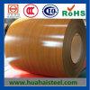 Bobina de acero cubierta color SPCC en el precio de Compertitive