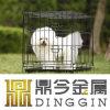 Reizend Hundeträger mit ABS Tellersegment