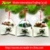Festa Craft Indoor Christmas Decorations con Hanging Strap