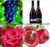 Vino salvaje superior de la granada de la uva de la UE 100%Natural Rose/tipo Brut, antocianina rica, aminoácidos, anticáncer, resistencia de radiación, antienvejecedora, tónico de la sangre