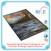Paperback Folleto Catálogo Servicios de imprenta casebound cuadernos de tapa dura Imprimir