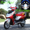 Bici eléctrica con la batería de plomo Gk-48005 de 48V 12ah