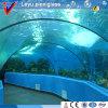 A folha acrílica do molde novo fêz o tanque quadrado de /Fish do aquário dos peixes