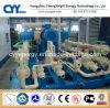 CNG25によってスキッド取付けられるLcng CNGの液化天然ガスの組合せの給油所