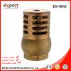 Válvula de verificação de bronze cheia da válvula de aspiração