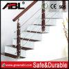 Het Roestvrij staal van Abl 304/316 Balustrade