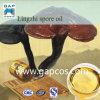 100% reines natürliches Ganoderma Spore-Schmieröl--Freie Radikale beseitigen