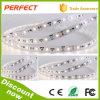 Heiß! DC24V 3528 High Lumen Degradation Constant Current LED Strip 60LEDs/M