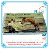 Cuaderno de cubierta suave, impresión del compartimiento, servicio de impresión del catálogo del cuaderno