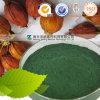 Lebensmittel-Zusatzstoff-China-natürliches Farben-Agensgardenia-Grün-Puder