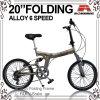 20 Drehzahl-faltendes Fahrrad der Inch-Aufhängung-Legierungs-7 (WL-2013A)
