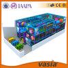 Campo de jogos 2015 do Aqua do produto novo de Vasia interno para Childrren