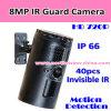 ПогодостойкfNs незримая камера предохранителя иК IP66
