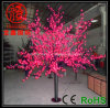LED 빨간 벚나무 빛