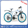 Berg Electric Bicycle mit 36V 250W