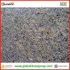 Granito para los azulejos de suelo, piedra de Giallo Santa Cecilia del granito del Brasil