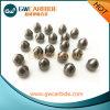 Dígitos binarios de botón del carburo de tungsteno de la alta calidad